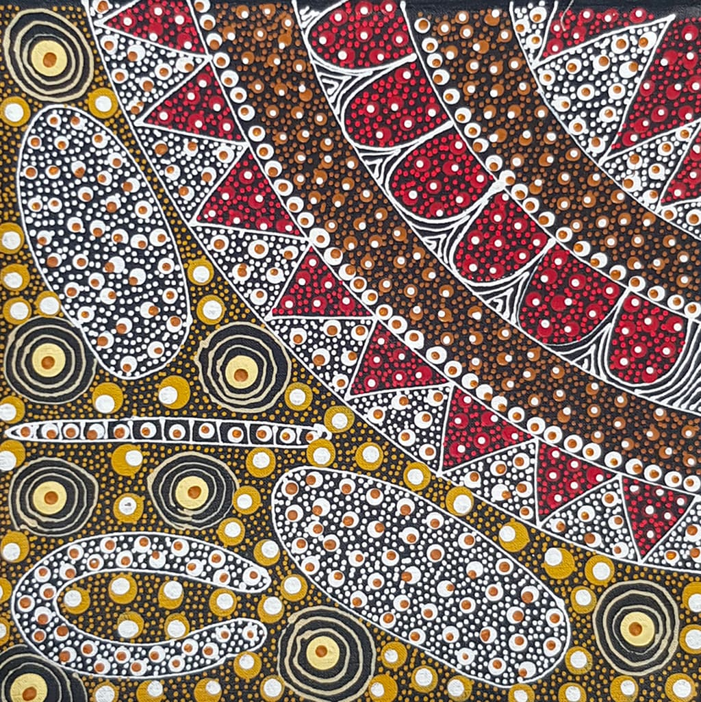Peinture aborigène Bush Plum jaune de Tanya Bird Mpetyane - DZ Galerie
