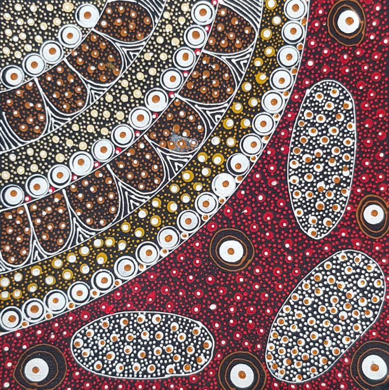 Peinture aborigène Bush Plum rouge de Tanya Bird Mpetyane - DZ Galerie